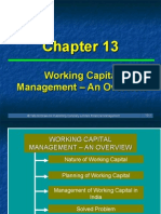 Ch 13 WorkingC M An Overview