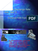 Assessing Exchange Rate RiskII