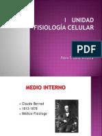 Clase_1_Medio Interno