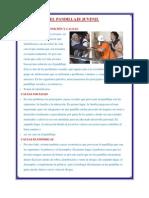 EL PANDILLAJE DEFINICIÓN Y CAUSAS