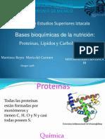 Bases bioquícas de la nutrición