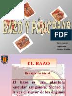 Presentación Bazo y Páncreas
