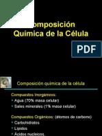 Comp Qca Celula 2008