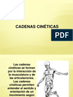 cadena cinetica abierta pdf