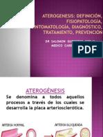ATEROGENESIS USMP