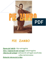 Clase Pie Zambo