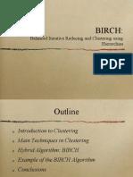 Birch 09