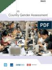 VN Gender Assessment
