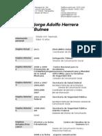 CV Jorge Adolfo Herrera Bulnes