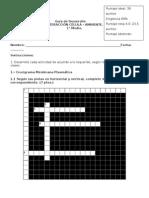 Guía de Desarrollo 1medio