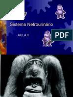 SNU2-Sistema Nefrourinário PráticaII