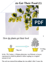 Photosynthesis 2 Question)