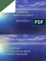 SNU4 Instrução Nefro Urinário II