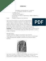 Historia antigua y funciones actuales enfermería