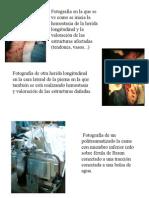 SEMINARIO 8 Imagenes comentadas (2)