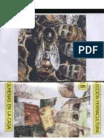 Agricultura Ecologica - Colección Permacultura 18 Colmenas en la Casa
