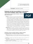 Evaluation of techno-scientific networks