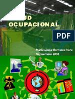 05 Salud Ocupacional