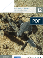 12. BV Turtle Conservation FRENCH A5 Handbook