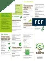 Mata_Atlantica_Ano_Internacional_Florestas_Programação