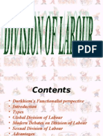 Division of Labour - Sociology