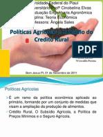 Políticas Agrícolas e Subsidio do Credito Rural