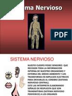 Expo Sic Ion Final Sistema Nervioso