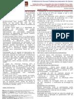 Poster PG PT Pedro Tavares