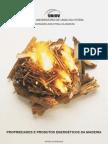 Apostila de Produtos e Propriedades Energéticas da Madeira