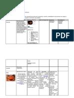 Normativas Sugeridas Para Salud Ocular2