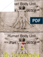 Anatomy Human Body Part IX Excretory System Unit PowerPoint for Educators from www.sciencepowerpoint.com
