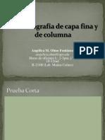 Lab 10 Cromatografia de Capa Fina y de Columna[1]