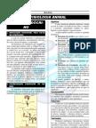 07-Fisiologia-sistema endocrino...