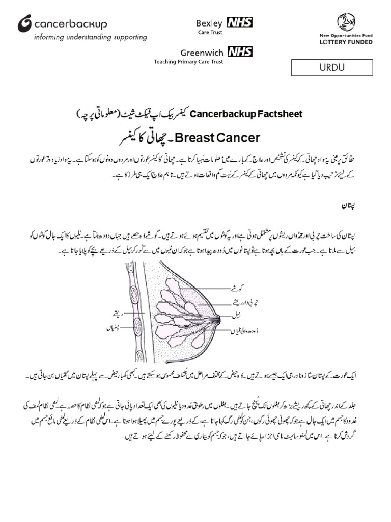 Breast Cancer What Is It Cancer Backup Urdu Hormone Replacement Therapy Breast Cancer
