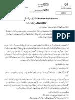 Breast Surgery Urdu Cancer Backup UK