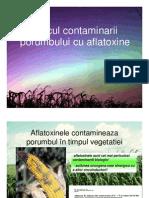 are Porumb Cu Aflatoxine