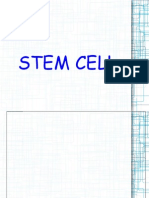 Stem Cell Power p