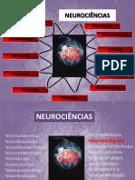 Historia da Neurocpptx