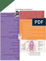 Efectos de La Bulimia en La Cavidad Bucal