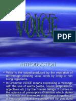 Voice Sourab