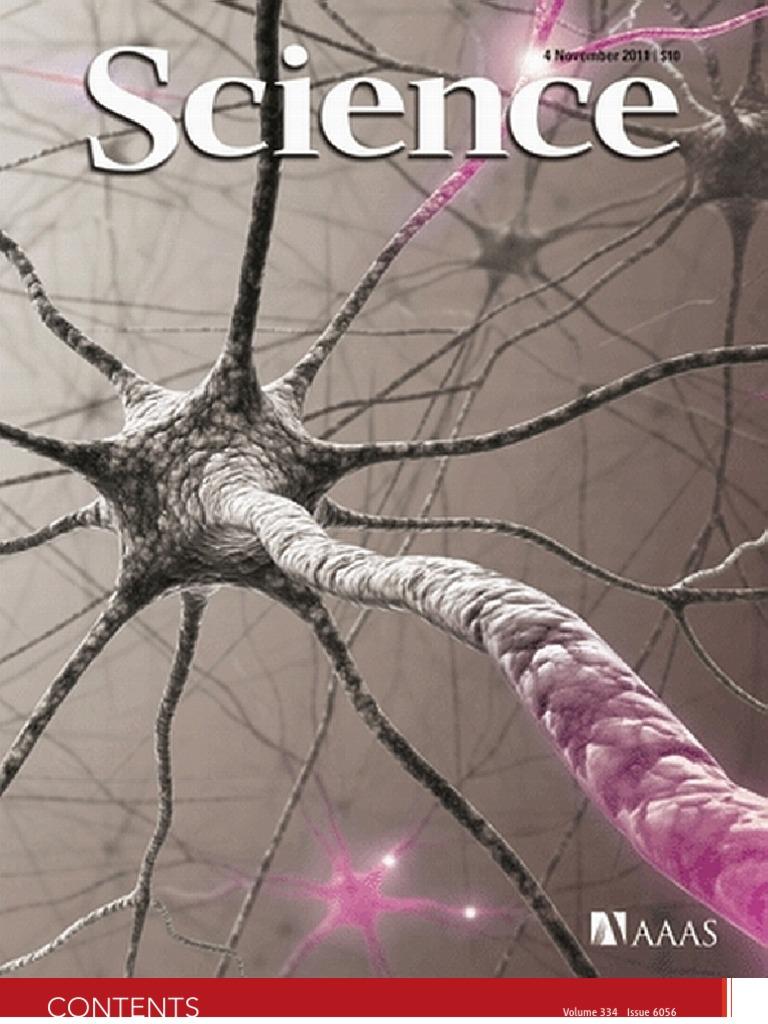 Science 2011 Earth Life Sciences Neuroscience Peak Design Capture Pro Camera Clip W Ccc 20pa