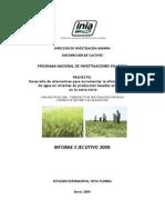 Informe 2008 INCAGRO Eficiencia Agua 3 Jun 09