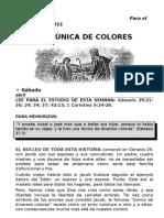 2011-02-04LeccionAdultos