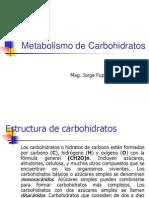 Metabolismo_de_Carbohidratos
