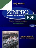 layerzinpro