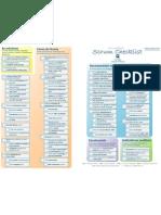 Scrum Checklist Pt Br 091222130130 Phpapp01
