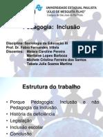 pedagogia da inclusão 2010
