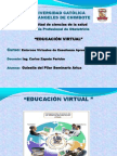 educacion virtual2