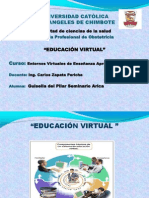 educacion virtual2