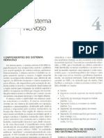 Sistema Nervoso - Victor c Speirs